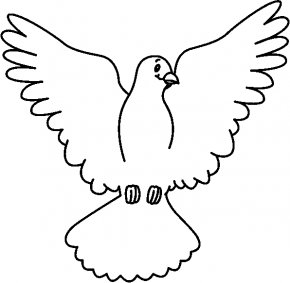 Dove Cliparts - Columbidae White Clip Art PNG