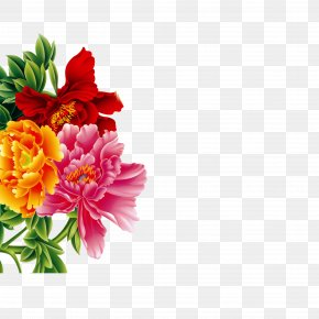 Painting Peony - Flower Moutan Peony Pattern PNG