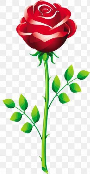 Vector Roses - Rose Royalty-free Stock Photography Clip Art PNG