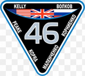 Space Station - Expedition 46 Emblem International Space Station Embroidered Patch NASA PNG