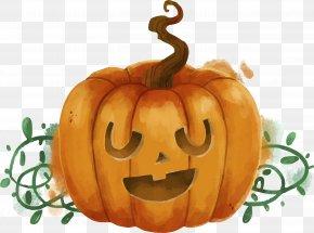 Funny Halloween Pumpkin Head Cartoon - Jack-o'-lantern Calabaza Winter Squash Gourd Pumpkin PNG