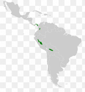 United States - Latin America South America United States Region PNG