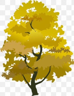 Trees - Tree Autumn Clip Art PNG