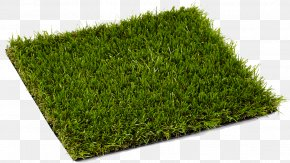 Turf - Lawn Artificial Turf Artificial Knowing Carpet Landscape Fabric PNG