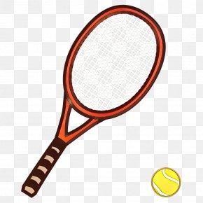 Speed Badminton Ball Badminton - Badminton Cartoon PNG