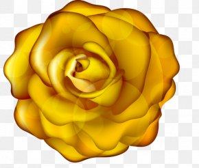 Flower - Garden Roses Yellow Flower Clip Art PNG