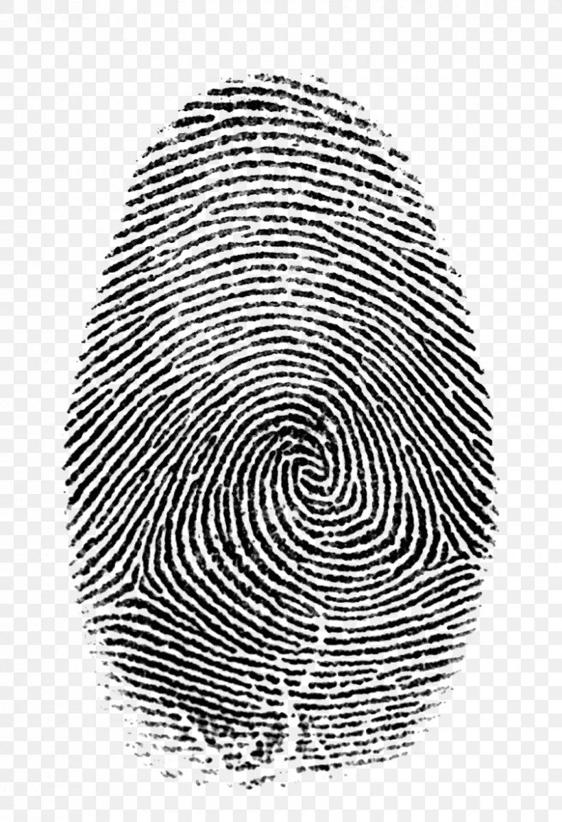 Fingerprint Forensic Science Live Scan Hand Png 840x1228px Fingerprint Biometrics Black And White Crime Crime Scene