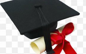 Student - Graduation Ceremony Square Academic Cap Academic Degree Graduate University Student PNG