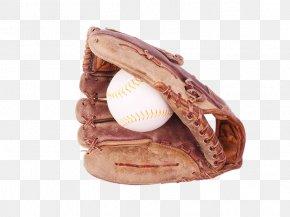 Beisbol - Baseball Glove Sport Clip Art PNG