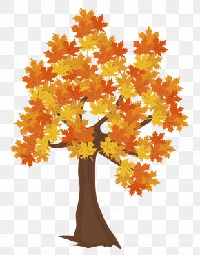 Fall Tree Image - Tree Autumn Computer File PNG