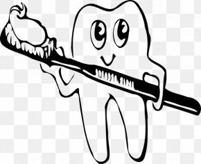 Brush Your Teeth Clipart - Human Tooth Tooth Brushing Clip Art PNG
