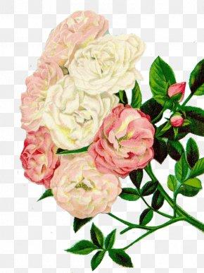 Retro Flower Design Material - Flower Vintage Clothing Seed Clip Art PNG