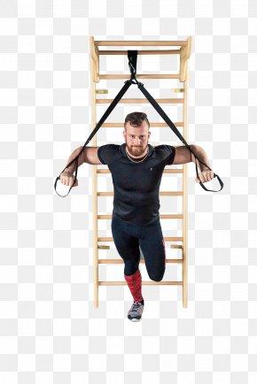 Gymnastics - Wall Bars Physical Fitness Gymnastics Wood Sport PNG