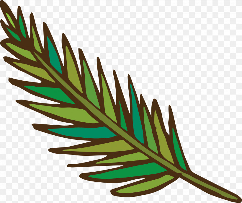 Leaf Plant Stem Grasses Flower M-tree, PNG, 3000x2516px, Leaf, Biology, Flower, Grasses, Line Download Free