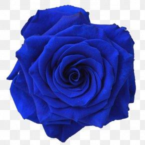 Blue Flower - Blue Rose Flower Navy Blue Clip Art PNG