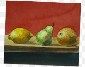 Painting - Still Life Photography Fine Art Painting PNG