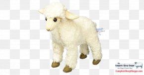 Toy - Stuffed Animals & Cuddly Toys Icelandic Sheep Plush Amazon.com PNG
