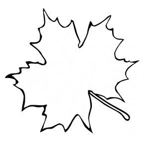 Fish Outline Template - Sugar Maple Maple Leaf Outline Clip Art PNG