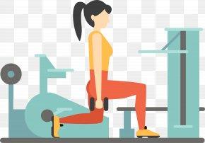 Vector Cartoon Woman Gym - Fitness Centre Euclidean Vector Weight Training PNG
