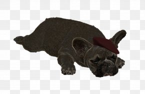 French Bulldog Yoga - French Bulldog Puppy Dog Breed Non-sporting Group PNG