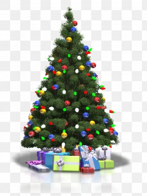 Christmas Tree Transparent Background - Christmas Tree PNG