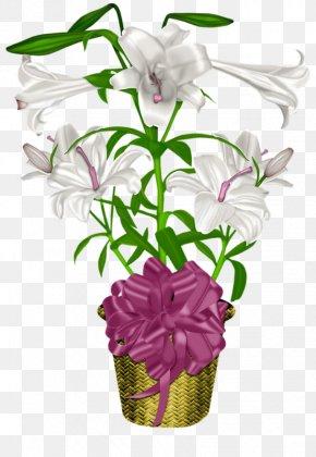 Lily Pot - Flowerpot Floral Design Lilium PNG