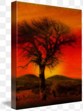 Watercolor Painting Tree - Painting Oil Pastel Art Oil Paint PNG