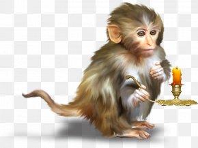 Hand-painted Monkey Candle - Monkey Orangutan Clip Art PNG