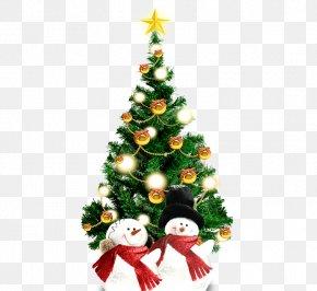 Christmas Tree And Snowman - Christmas Tree Christmas Ornament Spruce Fir PNG