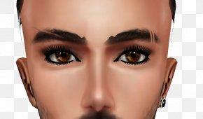 Eyebrows - Cosmetics Eyelash Eyebrow Face Eye Shadow PNG