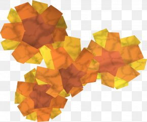 Marigold - Old School RuneScape Tagetes Lucida Flower Seed PNG