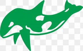 Green Dolphin - Dolphin Killer Whale Tattoo Pisces Sketch PNG