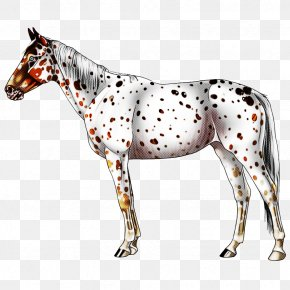 Figurine Toy - Horse Animal Figure Mare Snout Stallion PNG