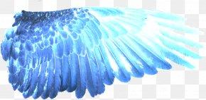 Wings Of Fire Desktop Wallpaper - Clip Art Image Digital Art Desktop Wallpaper PNG