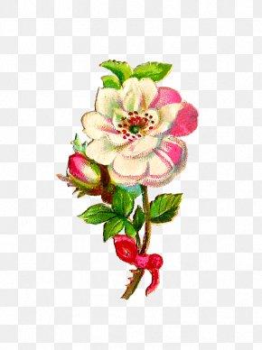 Rose Graphics - Quran Islam Clip Art PNG
