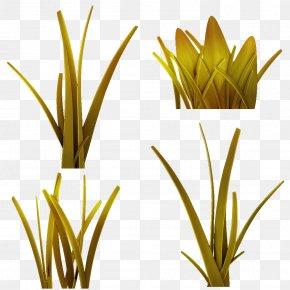 Leaf - Grasses Plant Stem Leaf Flower Commodity PNG