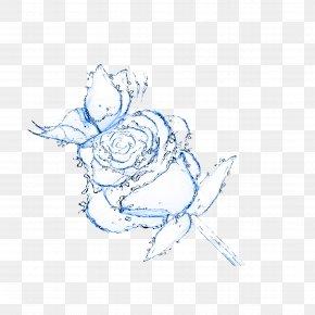 Water Elemental - Rose Water Flower Drop Wallpaper PNG