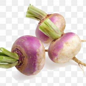 Natural Foods Plant - Vegetables Cartoon PNG
