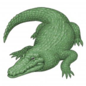 Crocodile - Crocodile Alligator IPhone Emoji Quiz PNG