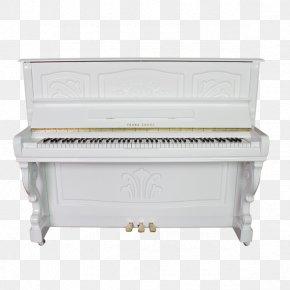 Piano - Digital Piano PNG