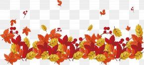 Red Maple Leaves Falling - Red Maple Maple Leaf PNG