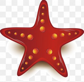 Chinese New Year Festive Element - Starfish Chemical Element PNG