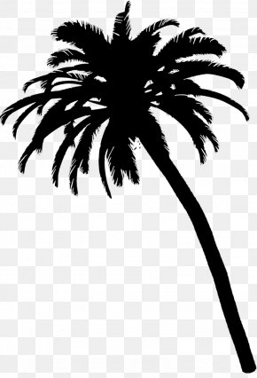 M Palm Trees Date Palm Leaf Flower - Black & White PNG