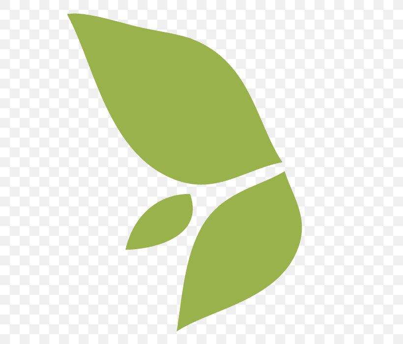 Leaf Logo Font, PNG, 700x700px, Leaf, Green, Logo, Plant, Plant Stem Download Free