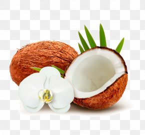 Coconut - Coconut Water Coconut Milk Clip Art PNG