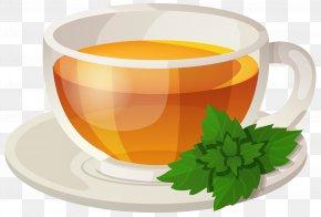 Cup Tea - Green Tea Sencha Drink Rooibos PNG