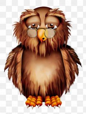 Owl - Owl Halloween Clip Art PNG