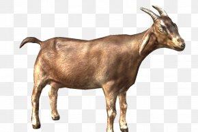 ANIMAl - Alpine Goat Cattle Fainting Goat Sheep Caprinae PNG