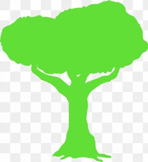 Arbol - Tree Branch Trunk Thepix Woody Plant PNG