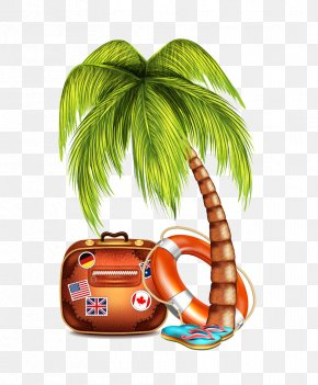 Coconut Tree Trunk Flops Illustration - Coconut Arecaceae Tree Clip Art PNG